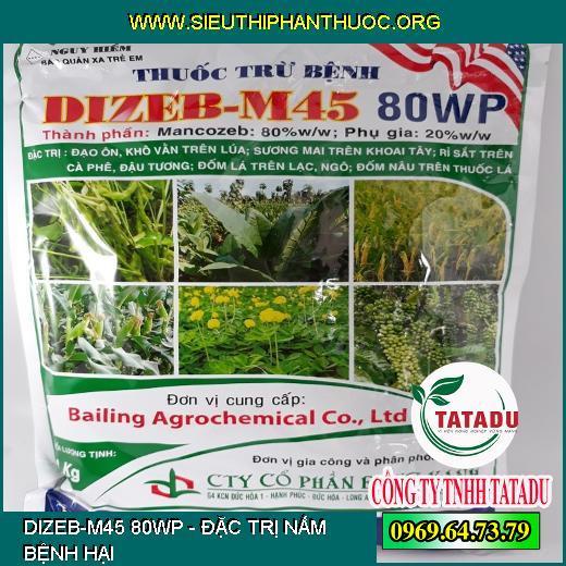 DIZEB-M45 80WP
