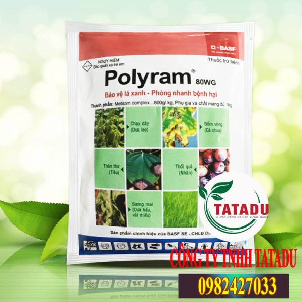 POLYRAM-80WG