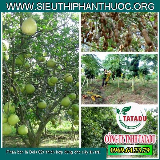 Phân bón lá Dola 02X thích hợp dùng cho cây ăn trái