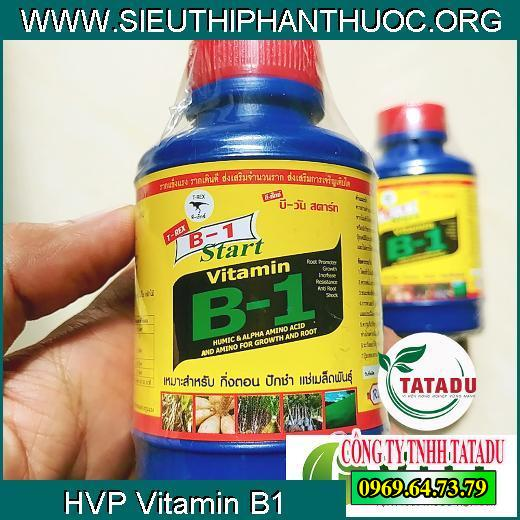 Start Vitamin B1 Thái