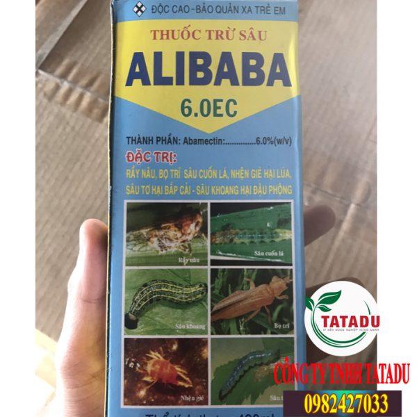 ALIBABA-6.0EC