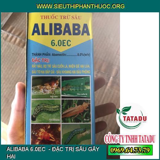 ALIBABA 6.0EC