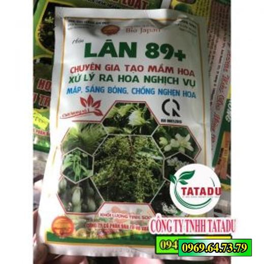 LAN-89-CHUYEN-TAO-MAM-HOA-XU-LY-RA-HOA-NGHICH-VU-KY-THUAT-TRONG-CAY-SAU-RIENG