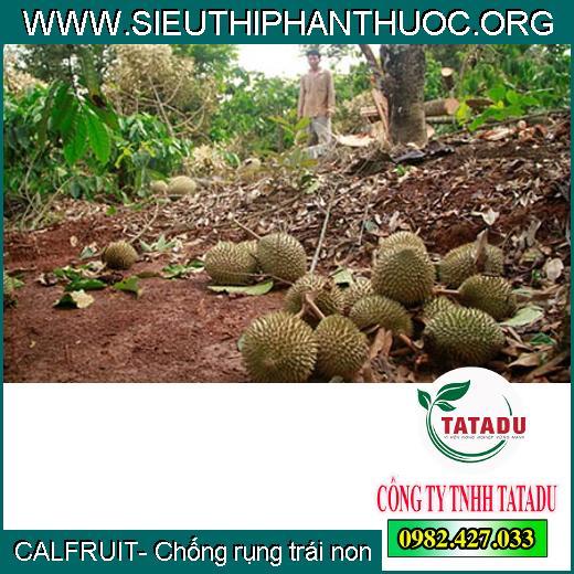 CALFRUIT- Chống rụng trái non