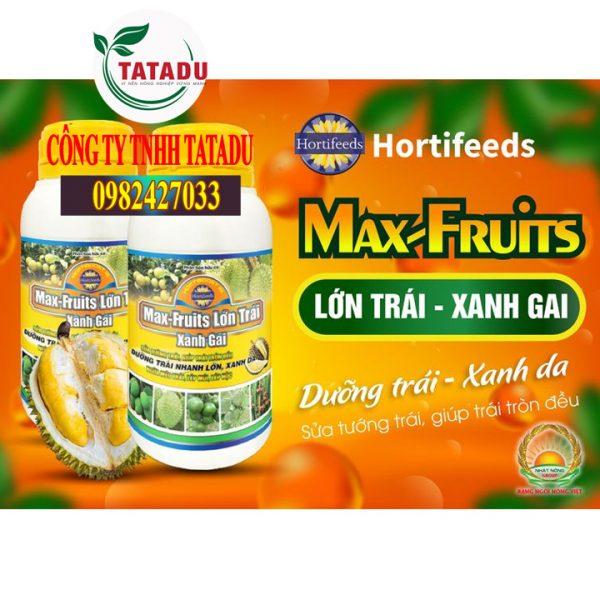 MAX-FRUITS