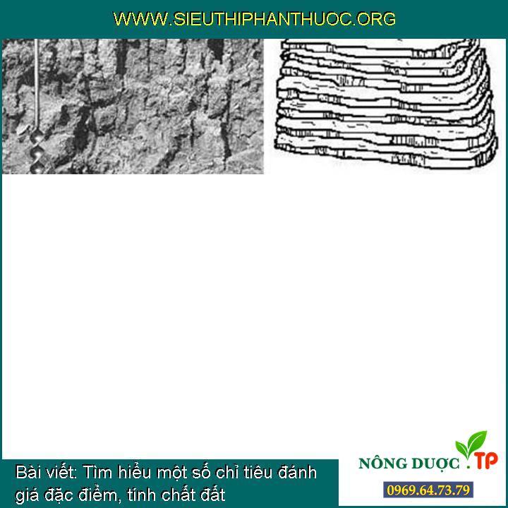Tìm hiểu một số chỉ tiêu đánh giá đặc điểm, tính chất đất