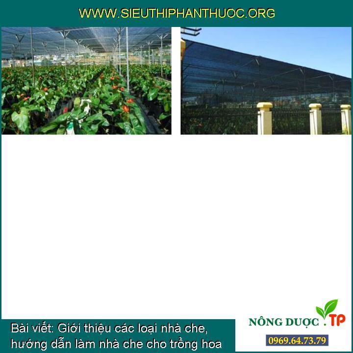 Giới thiệu các loại nhà che, hướng dẫn làm nhà che cho trồng hoa