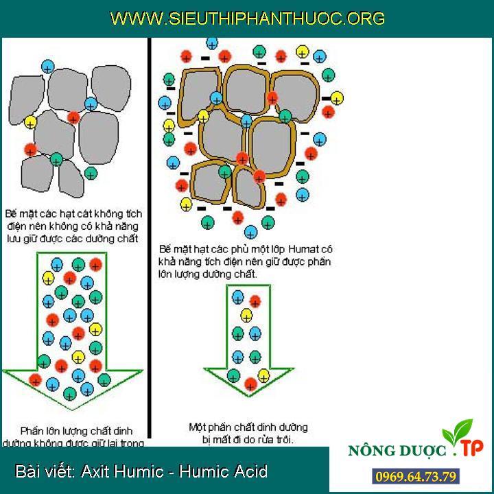 Axit Humic - Humic Acid