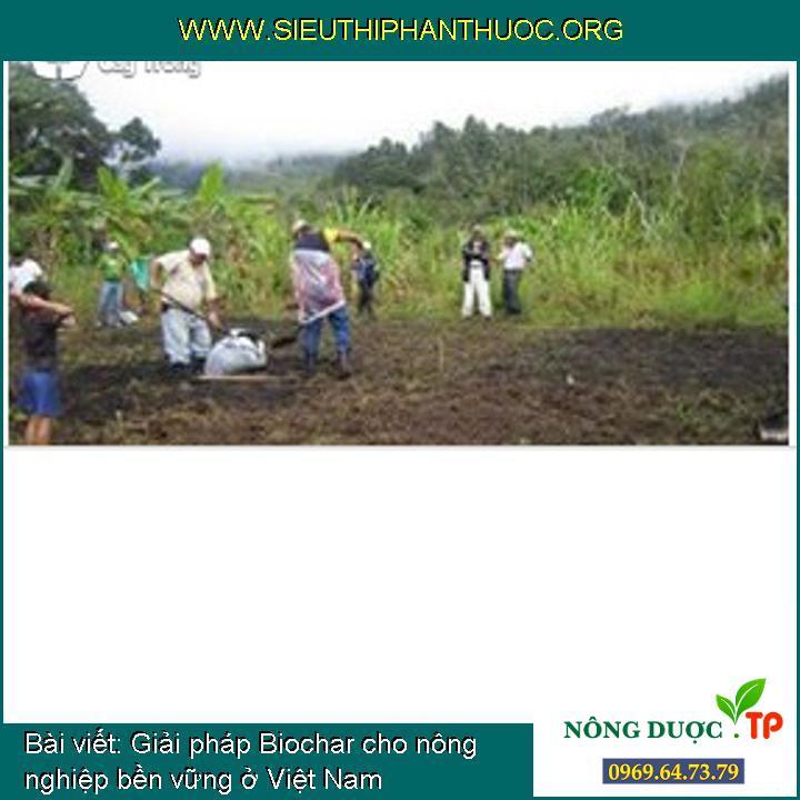 Giải pháp Biochar cho nông nghiệp bền vững ở Việt Nam