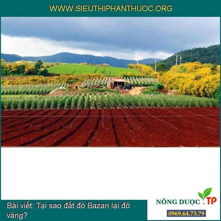 Tại sao đất đỏ Bazan lại đỏ vàng?