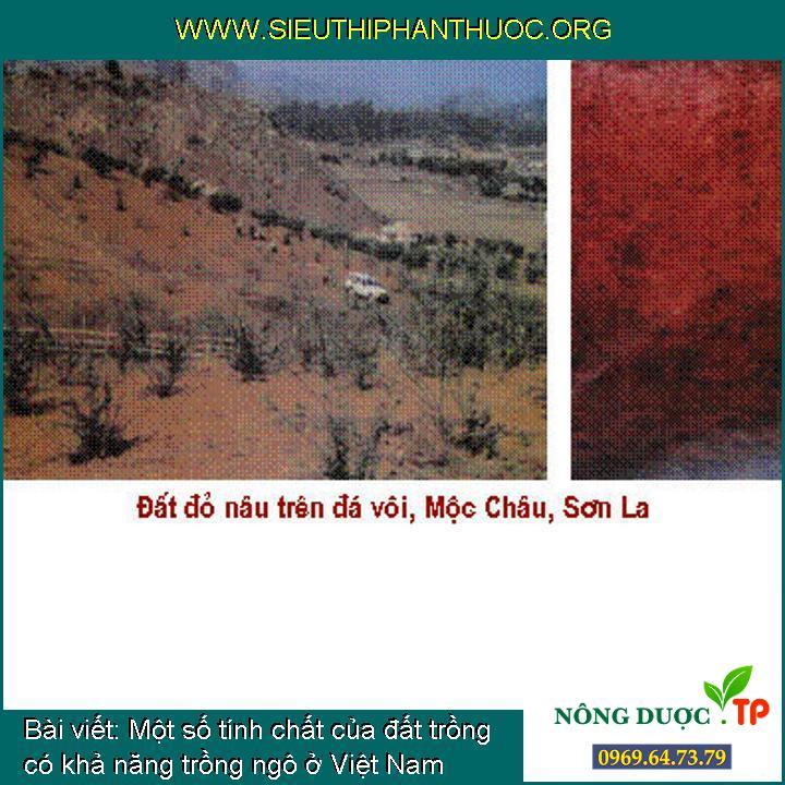 Một số tính chất của đất trồng có khả năng trồng ngô ở Việt Nam
