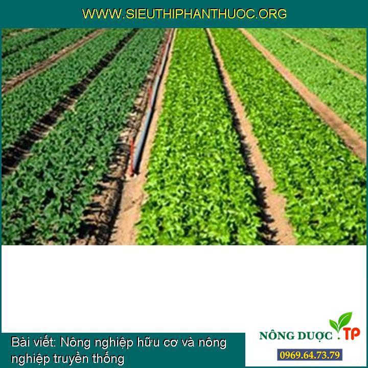 Nông nghiệp hữu cơ và nông nghiệp truyền thống