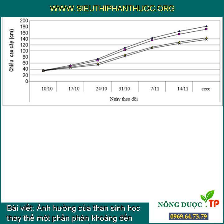 Ảnh hưởng của than sinh học thay thế một phần phân khoáng đến sinh trưởng và năng suất ngô