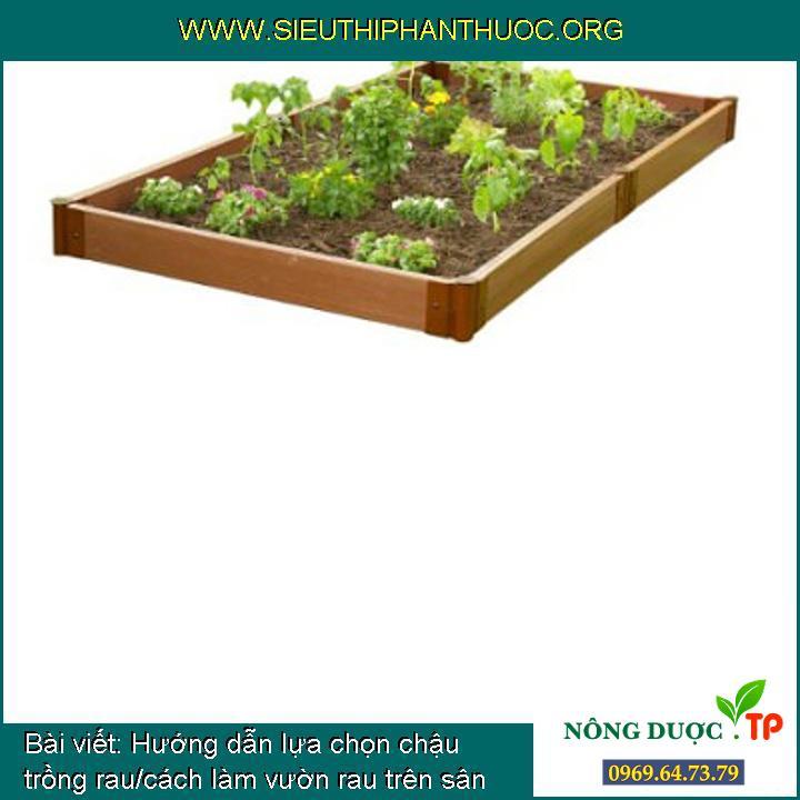 Hướng dẫn lựa chọn chậu trồng rau/cách làm vườn rau trên sân thượng