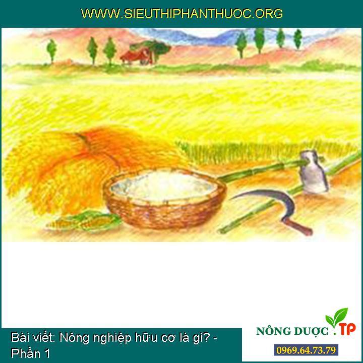 Nông nghiệp hữu cơ là gì? - Phần 1