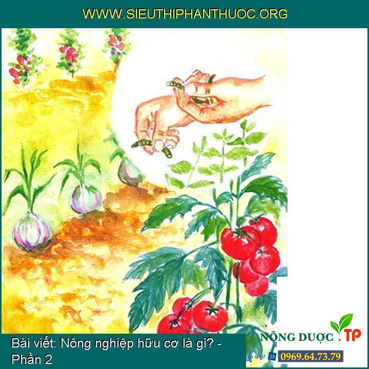 Nông nghiệp hữu cơ là gì? - Phần 2