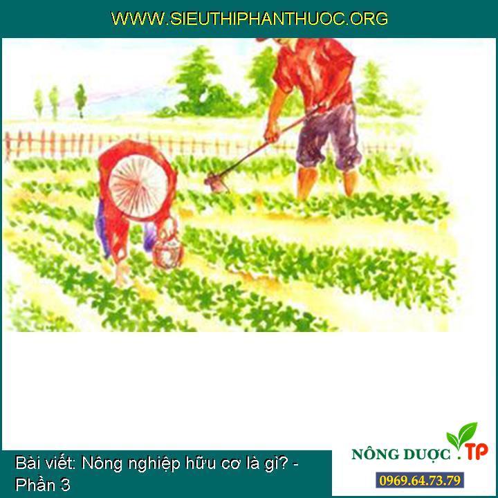 Nông nghiệp hữu cơ là gì? - Phần 3