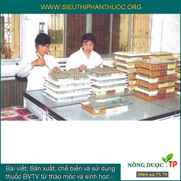 Sản xuất, chế biến và sử dụng thuốc BVTV từ thảo mộc và sinh học - P2
