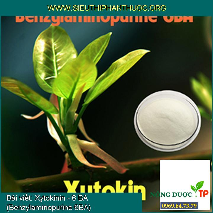 Xytokinin - 6 BA (Benzylaminopurine 6BA)