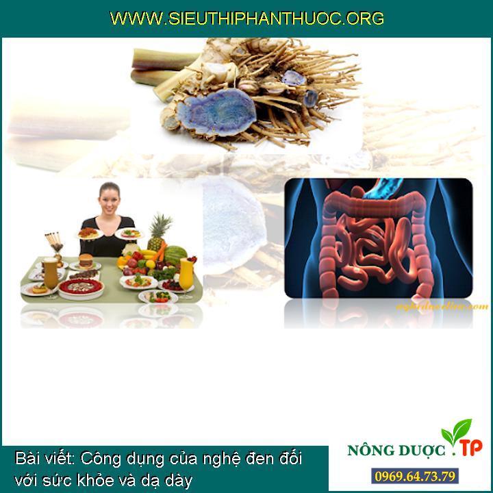 Công dụng của nghệ đen đối với sức khỏe và dạ dày