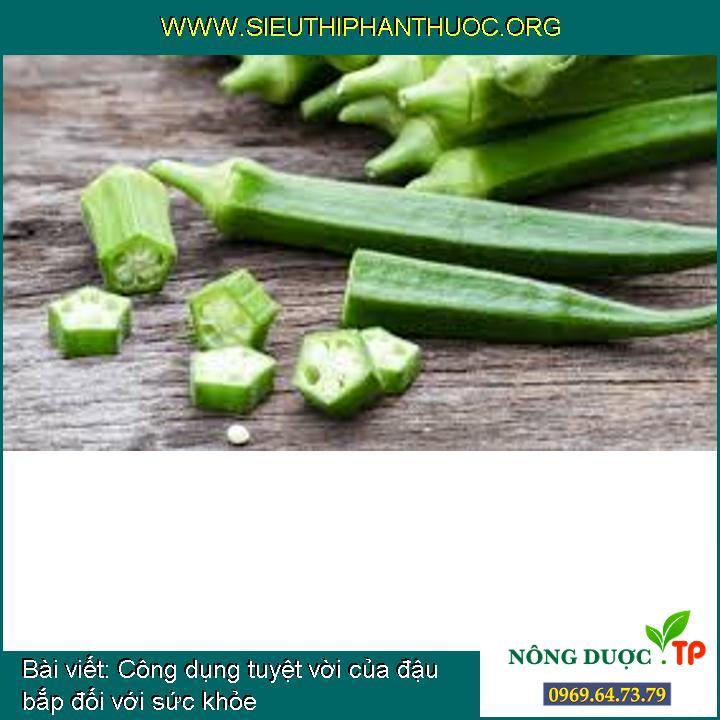 Công dụng tuyệt vời của đậu bắp đối với sức khỏe