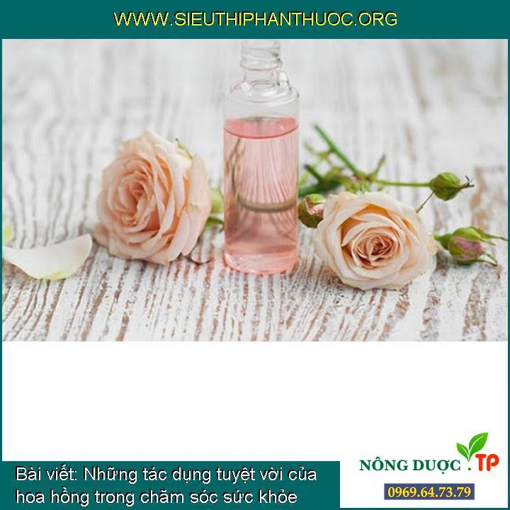 Những tác dụng tuyệt vời của hoa hồng trong chăm sóc sức khỏe