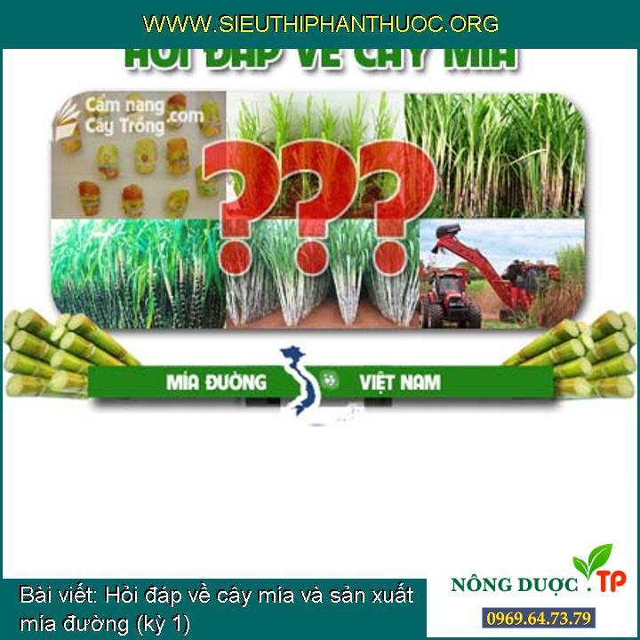 Hỏi đáp về cây mía và sản xuất mía đường (kỳ 10)