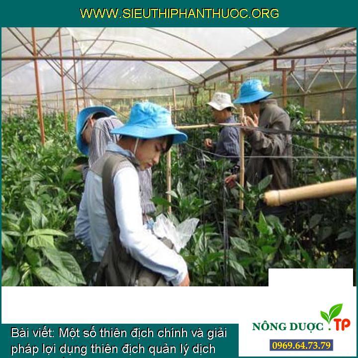 Một số thiên địch chính và giải pháp lợi dụng thiên địch quản lý dịch hại cây trồng