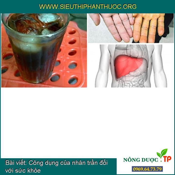 Công dụng của nhân trần đối với sức khỏe