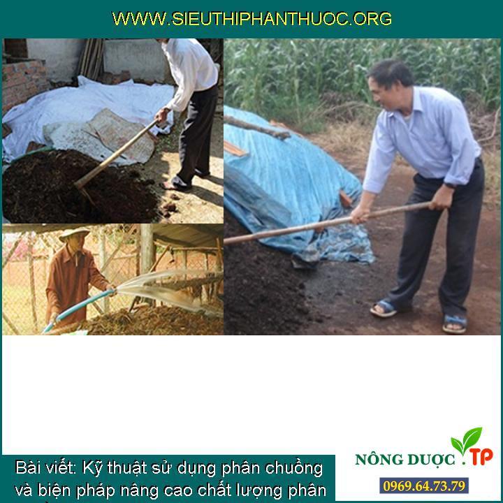 Kỹ thuật sử dụng phân chuồng và biện pháp nâng cao chất lượng phân chuồng khi ủ