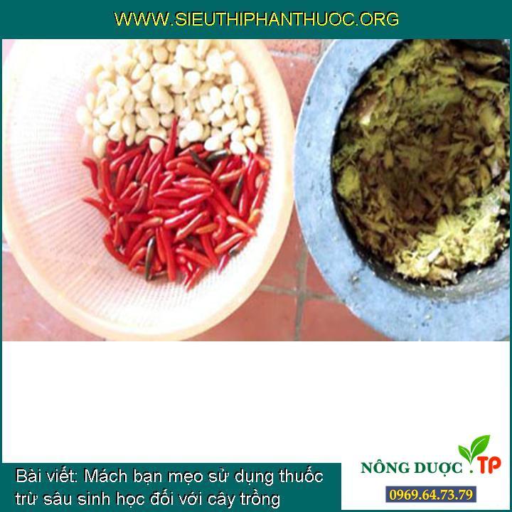 Mách bạn mẹo sử dụng thuốc trừ sâu sinh học đối với cây trồng