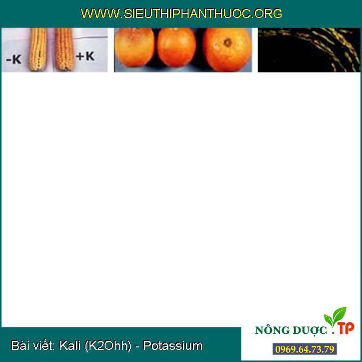 Kali (K2Ohh) - Potassium