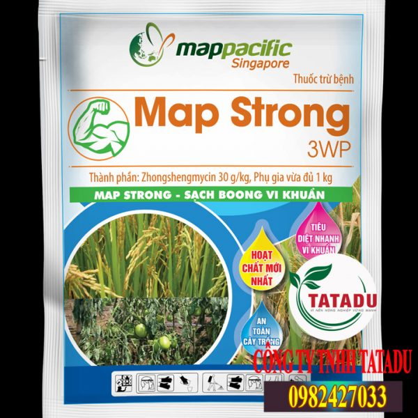 MAP-STRONG-3WP