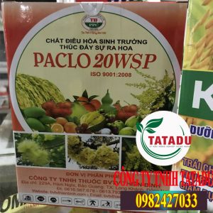 PACLO-20WSP