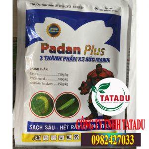 PADAN-PLUS